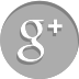 google-plus social media icon